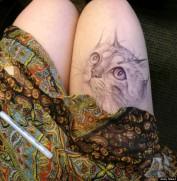 leg art by jody steel