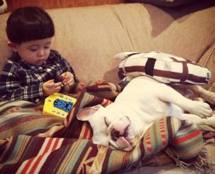 Little Boy and His French Bulldog